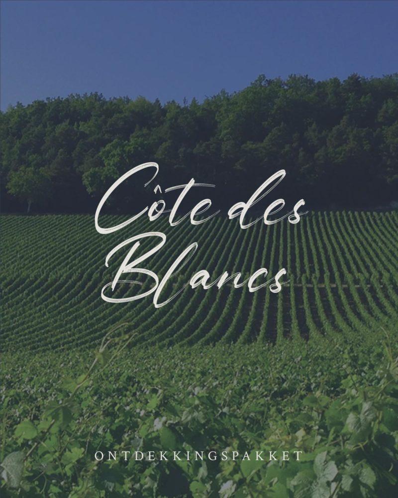 Ontdekkingspakketten CoteDeBlancs BullesDePrincesse Champagne